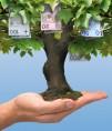 raty kredytów